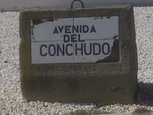 Conchudo