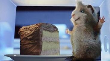 guinea pig birthday cake cuy torta ponqué pastel de cumpleaños