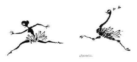 crush avestruz traga