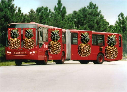 transcolado transmilenio colados bus bogotá